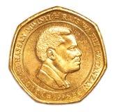 50 Tanzanian shilling coin Royalty Free Stock Photos
