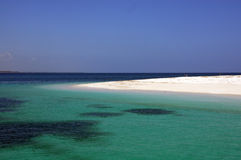 Tanzanisk strand arkivbild