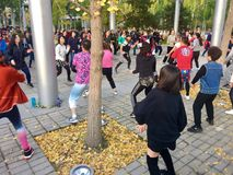 Tanzen in Gruppe des Olympicsparks Stockfotos