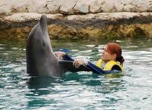 Tanzen mit Delphinen Stockfoto