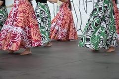 Tanzen Sie das hula Lizenzfreie Stockfotografie
