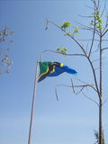 Tanzianan flaga Obrazy Royalty Free