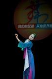 Taoist nun Royalty Free Stock Photos