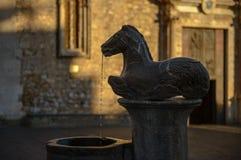 Taormina Fountain Horse by Vincenzo Cacopardo Stock Photos