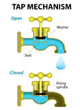 Tap mechanism. Vector diagram Royalty Free Stock Image