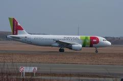 TAP Portugal flygbuss A320 på Köpenhamnflygplatsen royaltyfria bilder