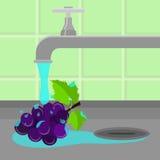 Tap washing grape Stock Photos