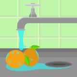 Tap washing oranges Royalty Free Stock Image