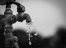 The tap water. Black and white picture royalty free stock photography