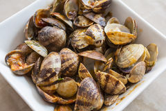 Tapa of clams with tomato Royalty Free Stock Photography