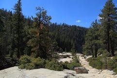 Tapa de las caídas de Nevada Imagen de archivo