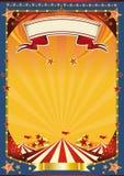 Tapa grande del whith agradable del cartel Foto de archivo libre de regalías