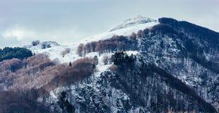 Tapa nevada de la montaña Foto de archivo