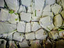Tapai cover with green leaf. Tradisional kuih make from rice, normally can be found in south east asia royalty free stock photography