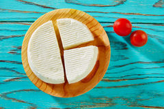Tapas Burgos cheese on round board Stock Images