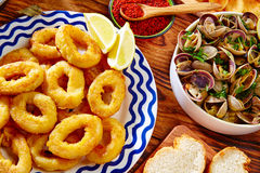 Tapas calamari romana squid rings seafood Spain Royalty Free Stock Images
