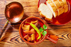Tapas Callos madrilena typical from Madrid Royalty Free Stock Photography