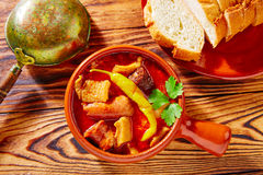 Tapas Callos madrilena typical from Madrid Royalty Free Stock Photos
