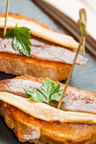 Tapas d'anchois Photos stock