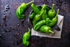 Tapas españoles tradicionales verdes crudos de jalapeno pimientos de padron de las pimientas Fotografía de archivo
