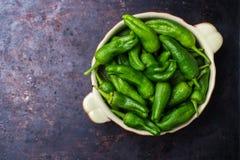 Tapas españoles tradicionales verdes crudos de jalapeno pimientos de padron de las pimientas Imagen de archivo libre de regalías