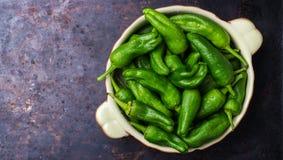 Tapas españoles tradicionales verdes crudos de jalapeno pimientos de padron de las pimientas Fotografía de archivo libre de regalías