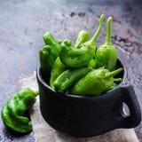 Tapas españoles tradicionales verdes crudos de jalapeno pimientos de padron de las pimientas Foto de archivo libre de regalías