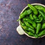 Tapas españoles tradicionales verdes crudos de jalapeno pimientos de padron de las pimientas Imágenes de archivo libres de regalías