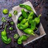 Tapas españoles tradicionales verdes crudos de pimientos de padron de las pimientas Foto de archivo