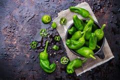 Tapas españoles tradicionales verdes crudos de pimientos de padron de las pimientas Imágenes de archivo libres de regalías