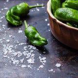 Tapas españoles tradicionales verdes crudos de pimientos de padron de las pimientas Imagen de archivo libre de regalías