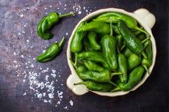 Tapas españoles tradicionales verdes crudos de pimientos de padron de las pimientas Fotos de archivo