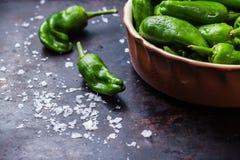 Tapas españoles tradicionales verdes crudos de pimientos de padron de las pimientas Fotos de archivo libres de regalías