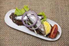 Tapas espagnols délicieux avec l'esprot de salade de beurre et d'oignon, atlantique sur la baguette de tranche Un excellent fond  Photo stock