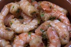 Tapas garlic prawns Stock Photography
