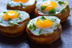 Tapas mushrooms with quail eggs from Spain Royalty Free Stock Photography