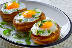 Tapas mushrooms with quail eggs from Spain Stock Photography