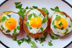 Tapas mushrooms with quail eggs from Spain Royalty Free Stock Photos