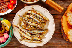 Tapas seafood fried anchovies fish Spain Royalty Free Stock Images