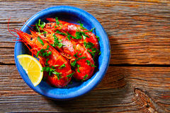 Tapas shrimps prawns seafood from Spain Royalty Free Stock Photo