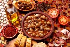 Tapas snail recipe from Spain Royalty Free Stock Image