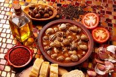Tapas snail recipe from Spain Royalty Free Stock Photo