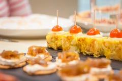 Tapas y queso de la tortilla española con pinchos de la cebolla Imagen de archivo libre de regalías