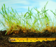 Tape-measure. Over grass and ground Stock Photo