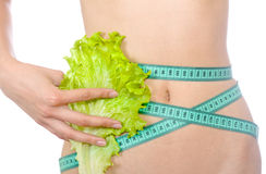 Tape measure and lettuce on waist isolated Royalty Free Stock Image