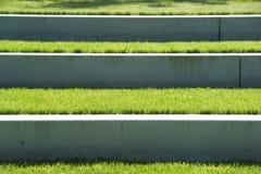 Étapes de jardin Image libre de droits