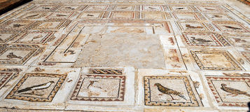 Tapestry Roman civilization. Tapestry Roman times of birds located in the Roman ruins of Italica in the Spanish province of Seville Royalty Free Stock Photos
