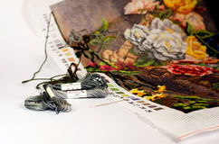 Tapestry work. With cotton thread and needle Stock Image