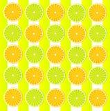 Tapeta z citrus-fruit Fotografia Stock