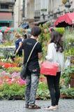 Tapete 2012 da flor Imagem de Stock Royalty Free